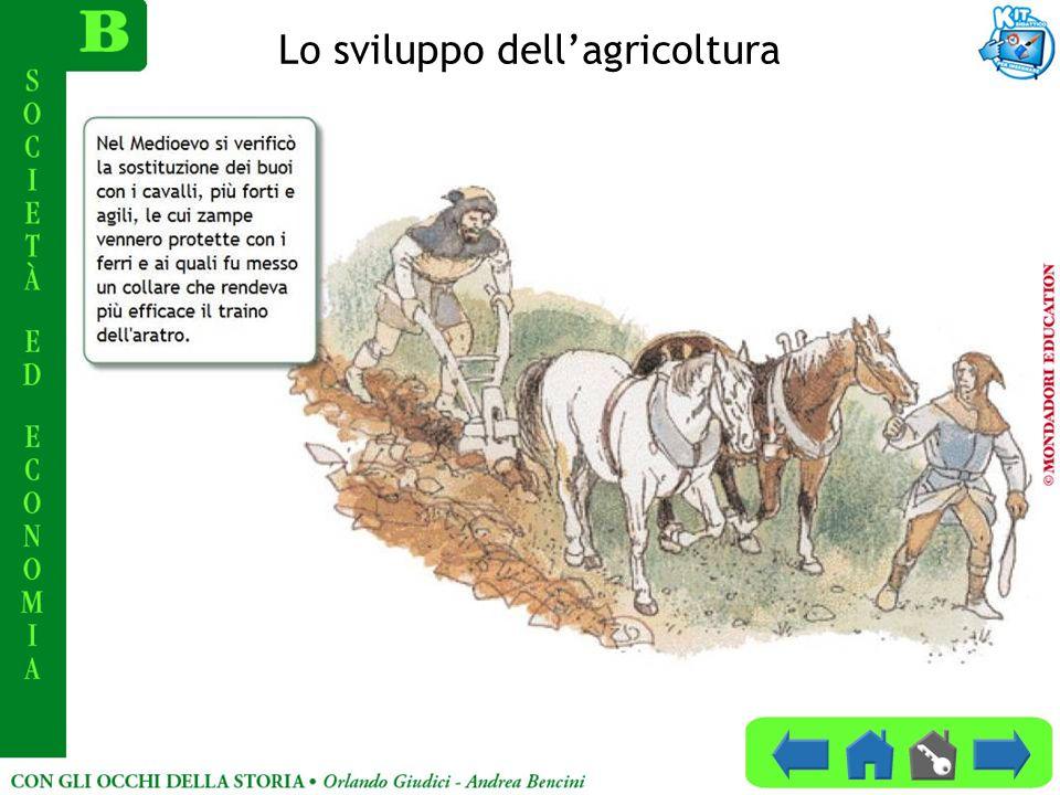 Lo sviluppo dellagricoltura