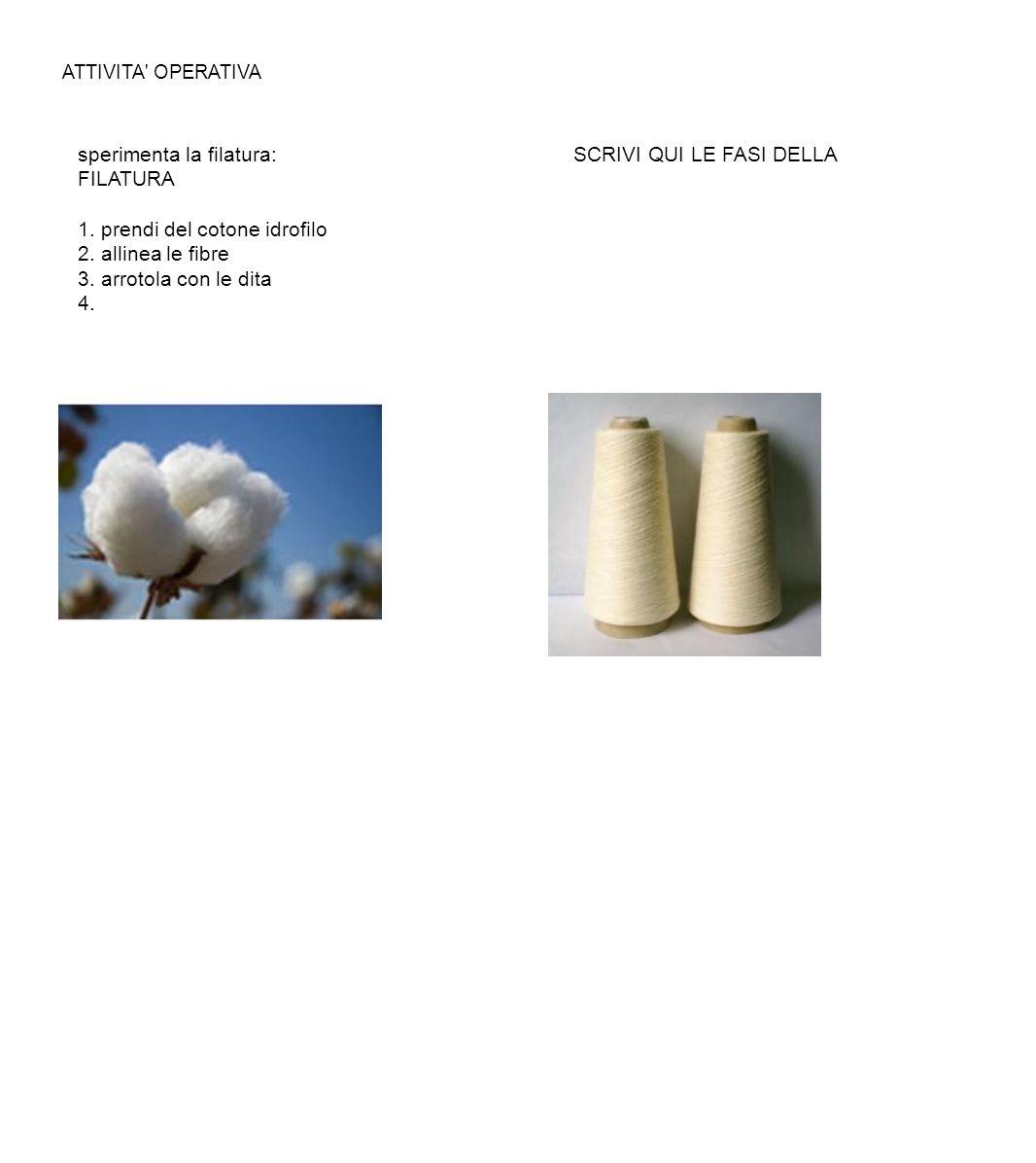 ATTIVITA' OPERATIVA sperimenta la filatura: SCRIVI QUI LE FASI DELLA FILATURA 1. prendi del cotone idrofilo 2. allinea le fibre 3. arrotola con le dit