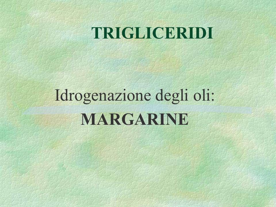 TRIGLICERIDI Idrogenazione degli oli: MARGARINE