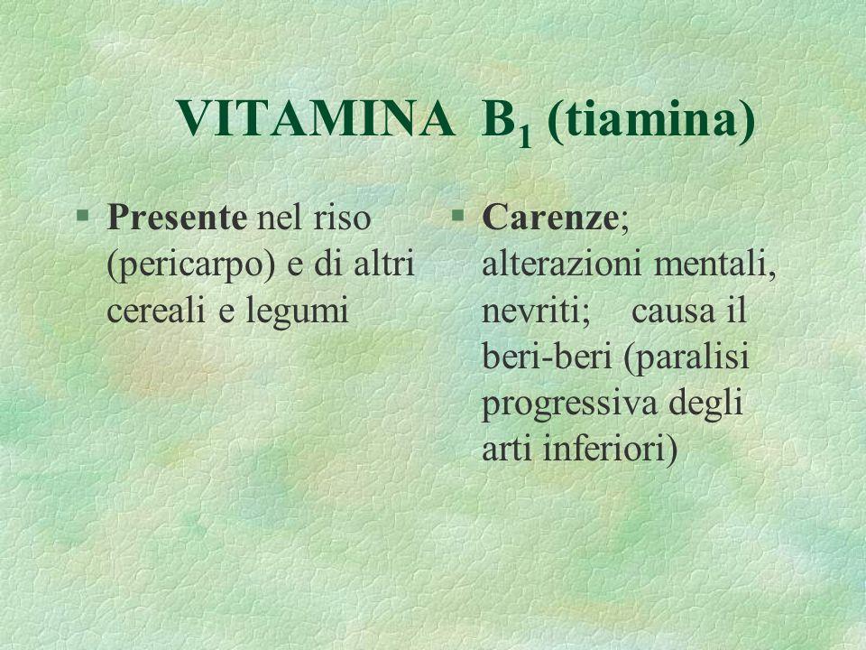 VITAMINA B 1 (tiamina) §Presente nel riso (pericarpo) e di altri cereali e legumi §Carenze; alterazioni mentali, nevriti; causa il beri-beri (paralisi