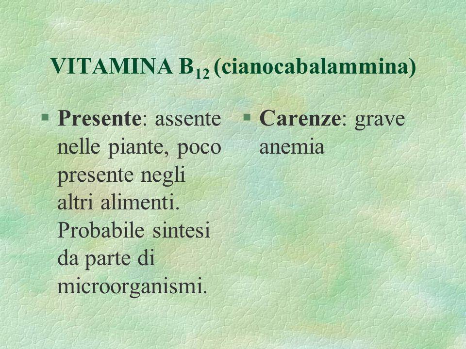 VITAMINA B 12 (cianocabalammina) §Presente: assente nelle piante, poco presente negli altri alimenti. Probabile sintesi da parte di microorganismi. §C