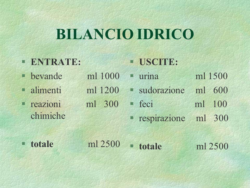 BILANCIO IDRICO §ENTRATE: §bevande ml 1000 §alimenti ml 1200 §reazioni ml 300 chimiche §totale ml 2500 §USCITE: §urina ml 1500 §sudorazione ml 600 §fe