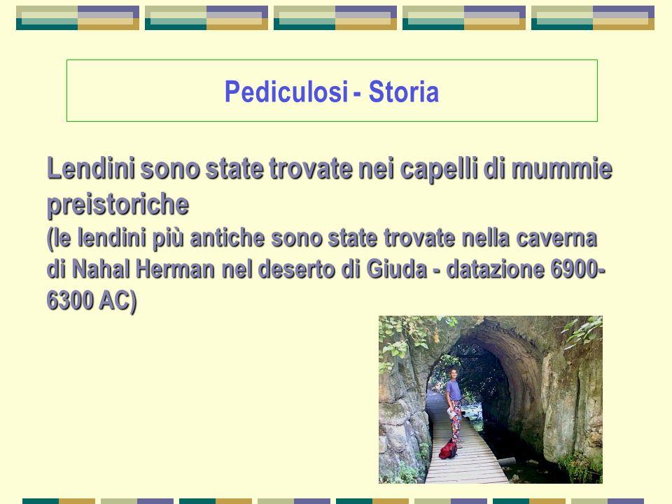 Pediculosi - Storia Lendini sono state trovate nei capelli di mummie preistoriche (le lendini più antiche sono state trovate nella caverna di Nahal He