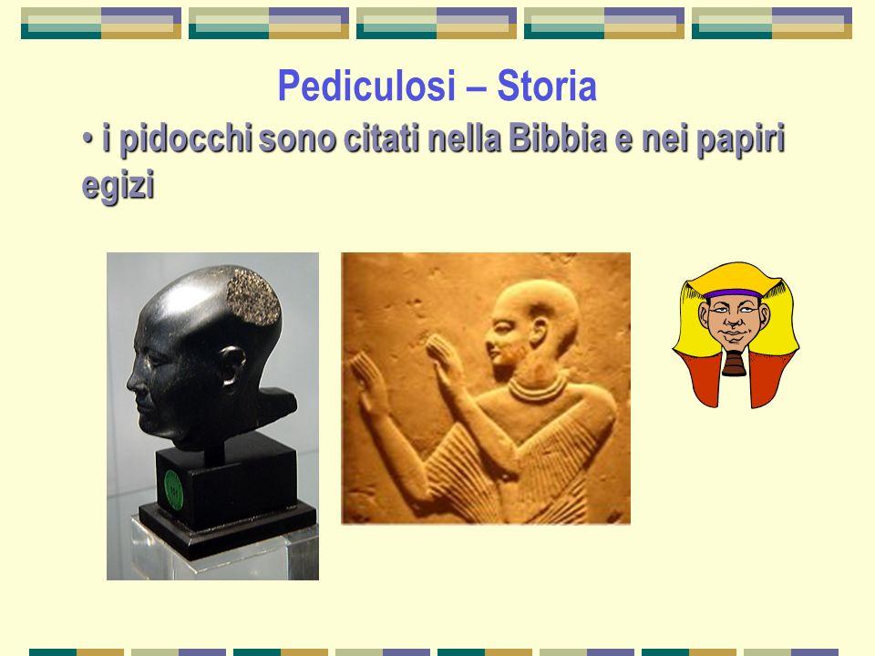 Pediculosi – Storia i pidocchi sono citati nella Bibbia e nei papiri egizi i pidocchi sono citati nella Bibbia e nei papiri egizi