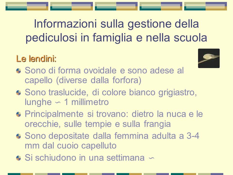 Informazioni sulla gestione della pediculosi in famiglia e nella scuola Le lendini: Sono di forma ovoidale e sono adese al capello (diverse dalla forf