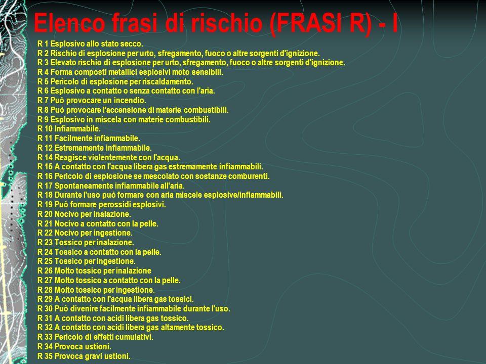 Elenco frasi di rischio (FRASI R) - I R 1 Esplosivo allo stato secco.