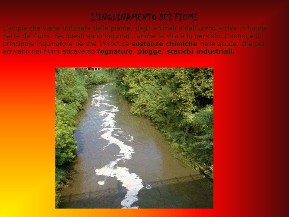 L'INQUINAMENTO DEI FIUMI L'acqua che viene utilizzata dalle piante, dagli animali e dall'uomo arriva in buona parte dai fiumi. Se questi sono inquinat