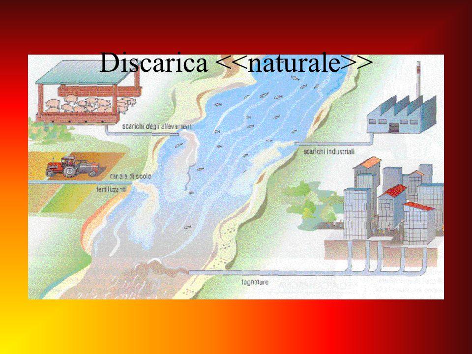 Discarica >
