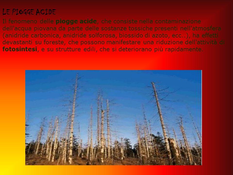 LE PIOGGE ACIDE Il fenomeno delle piogge acide, che consiste nella contaminazione dell acqua piovana da parte delle sostanze tossiche presenti nell atmosfera (anidride carbonica, anidride solforosa, biossido di azoto, ecc..), ha effetti devastanti su foreste, che possono manifestare una riduzione dell attività di fotosintesi, e su strutture edili, che si deteriorano più rapidamente.