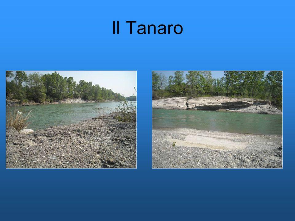 Il Tanaro