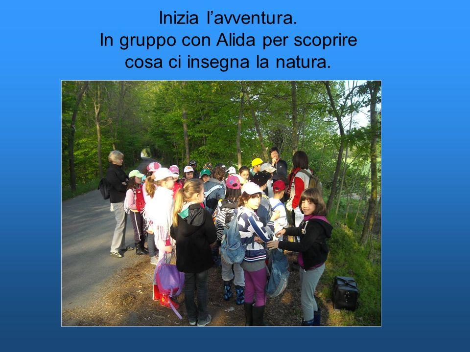 Inizia lavventura. In gruppo con Alida per scoprire cosa ci insegna la natura.