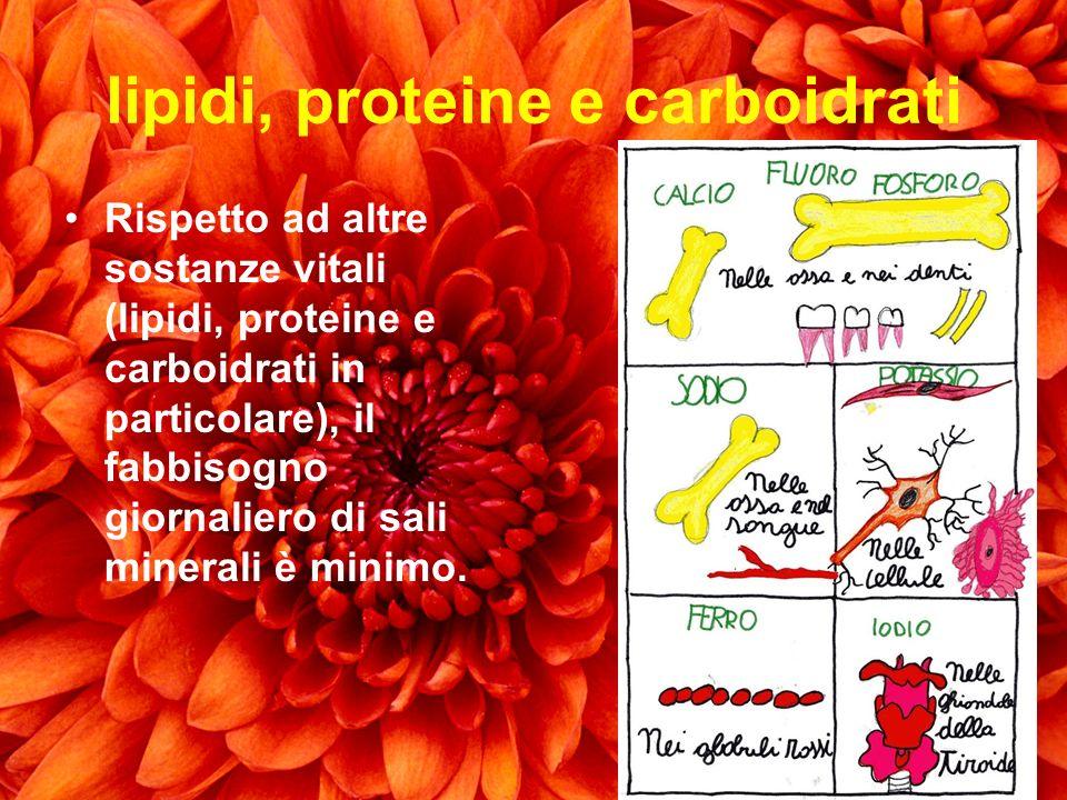 lipidi, proteine e carboidrati Rispetto ad altre sostanze vitali (lipidi, proteine e carboidrati in particolare), il fabbisogno giornaliero di sali mi