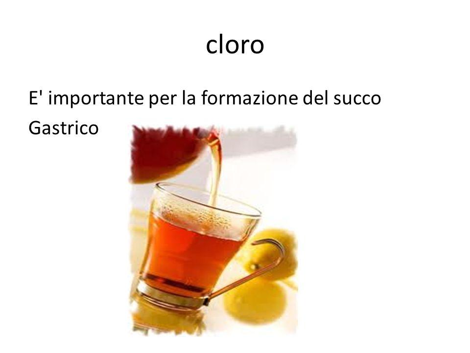 cloro E' importante per la formazione del succo Gastrico