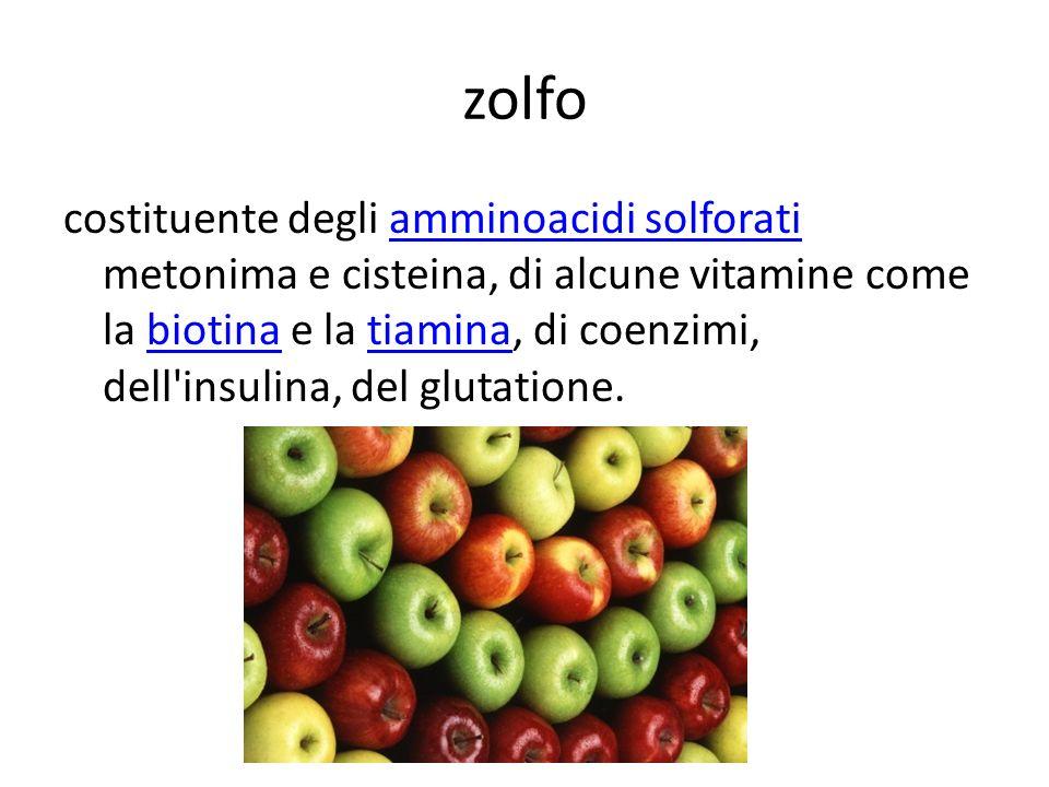 zolfo costituente degli amminoacidi solforati metonima e cisteina, di alcune vitamine come la biotina e la tiamina, di coenzimi, dell'insulina, del gl