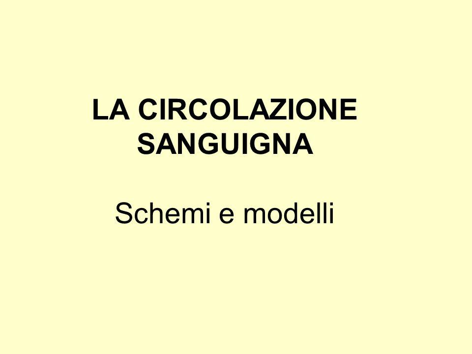 LA CIRCOLAZIONE SANGUIGNA Schemi e modelli