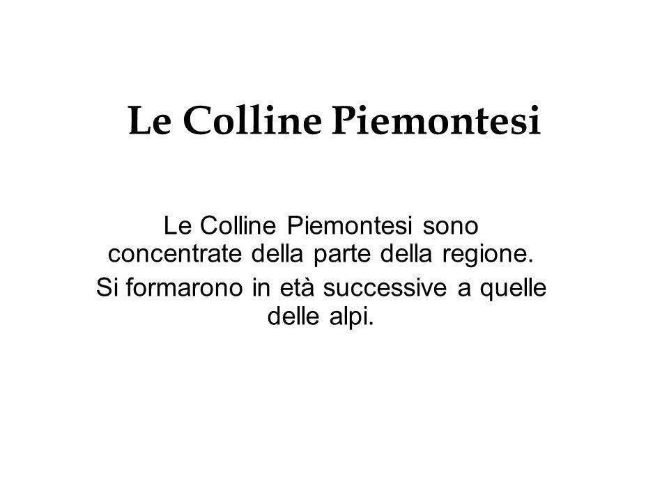 Le Colline Piemontesi Le Colline Piemontesi sono concentrate della parte della regione.
