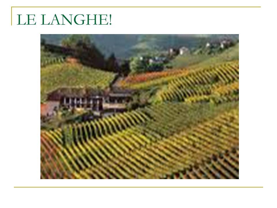 Le Langhe sono una fascia di colline situate alla destra orografica del fiume Tanaro nella provincia di Cuneo ed Asti in Piemonte.