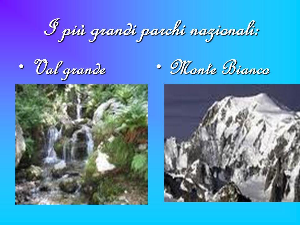 I più grandi parchi nazionali: Val grandeVal grande Monte BiancoMonte Bianco