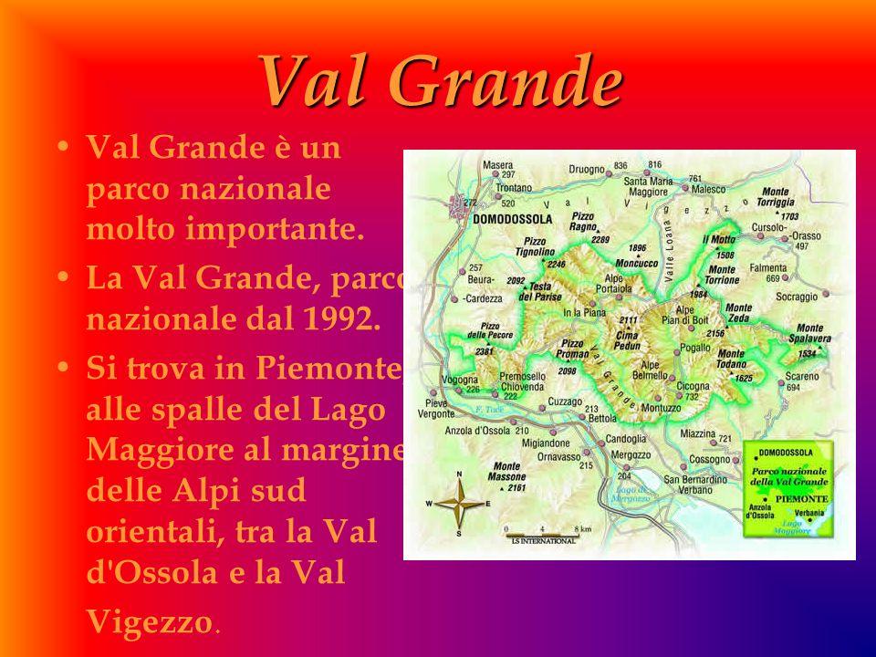 Val Grande V al Grande è un parco nazionale molto importante. L a Val Grande, parco nazionale dal 1992. S i trova in Piemonte, alle spalle del Lago Ma