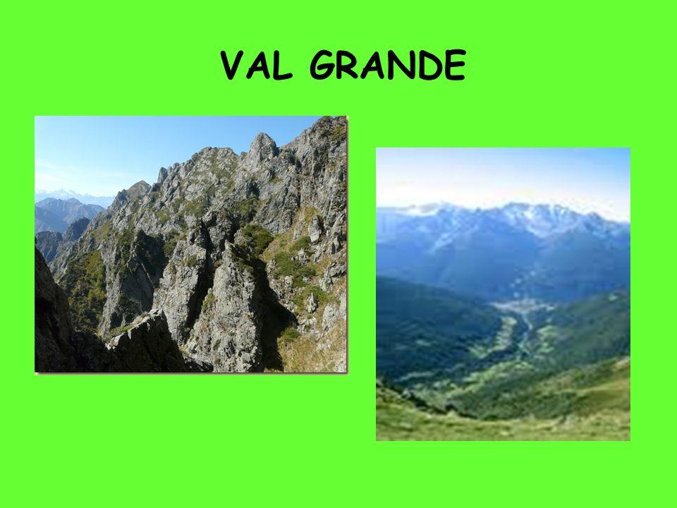 DOVE SI TROVA La Val Grande, in Piemonte, fra il Lago Maggiore e la Val d Ossola e vicino alla Svizzera (Canton Ticino), Parco Nazionale dal 1992.