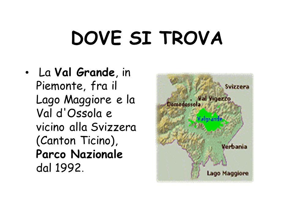 DOVE SI TROVA La Val Grande, in Piemonte, fra il Lago Maggiore e la Val d'Ossola e vicino alla Svizzera (Canton Ticino), Parco Nazionale dal 1992.
