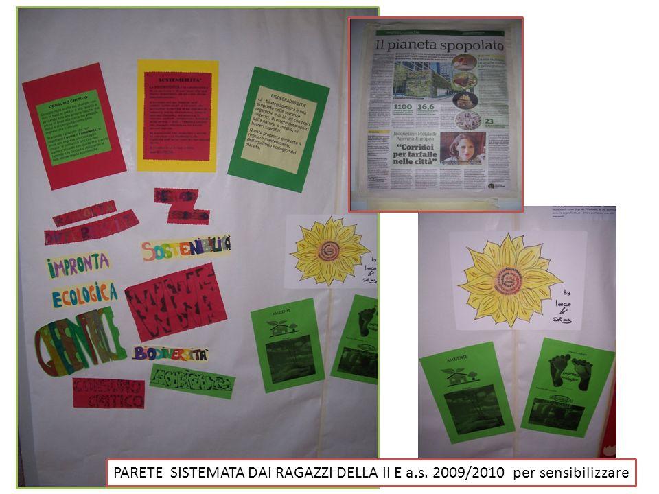 PARETE SISTEMATA DAI RAGAZZI DELLA II E a.s. 2009/2010 per sensibilizzare