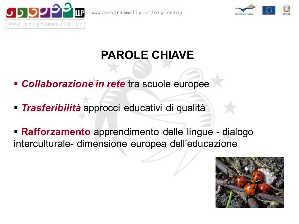 PAROLE CHIAVE Collaborazione in rete tra scuole europee Trasferibilità approcci educativi di qualità Rafforzamento apprendimento delle lingue - dialogo interculturale- dimensione europea delleducazione