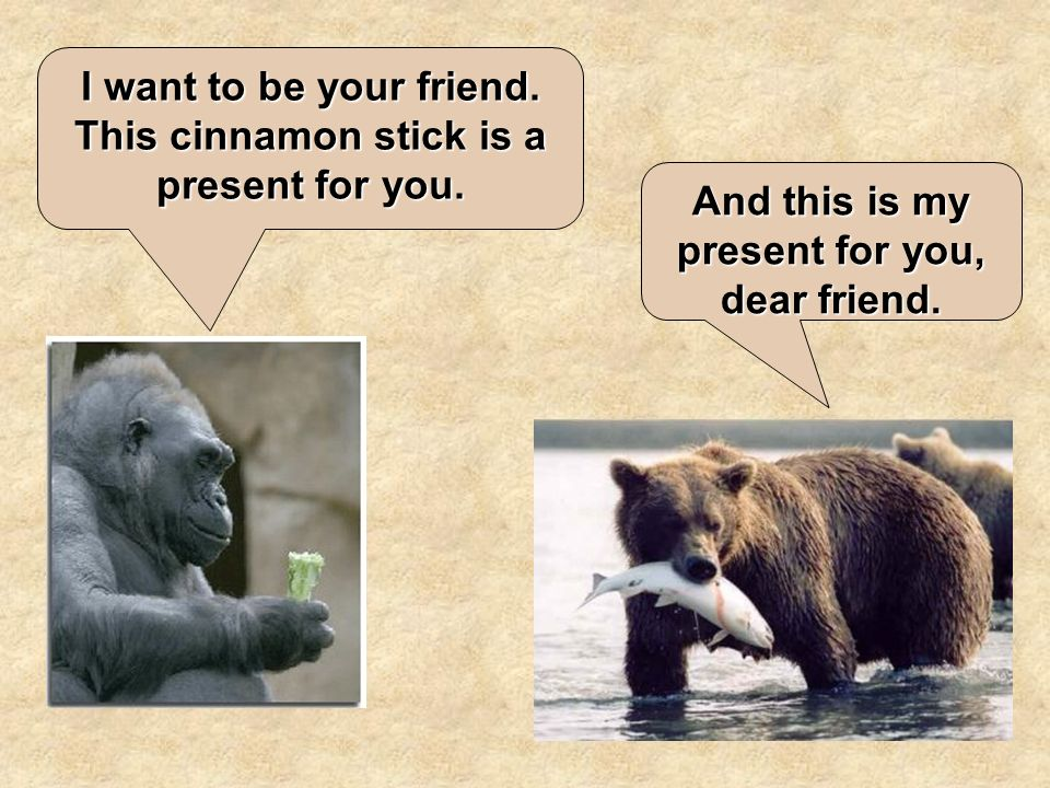 I want to be your friend. This cinnamon stick is a present for you.