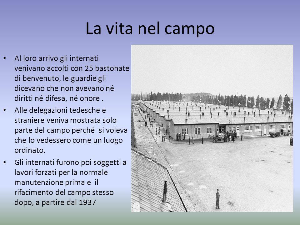 La vita nel campo Al loro arrivo gli internati venivano accolti con 25 bastonate di benvenuto, le guardie gli dicevano che non avevano né diritti né d