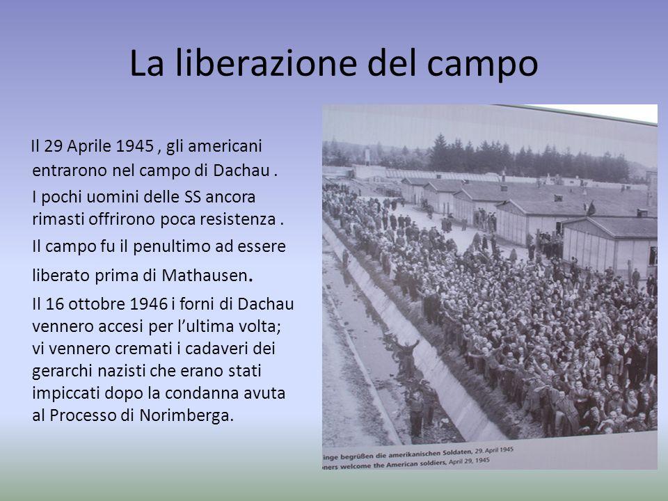 La liberazione del campo Il 29 Aprile 1945, gli americani entrarono nel campo di Dachau. I pochi uomini delle SS ancora rimasti offrirono poca resiste