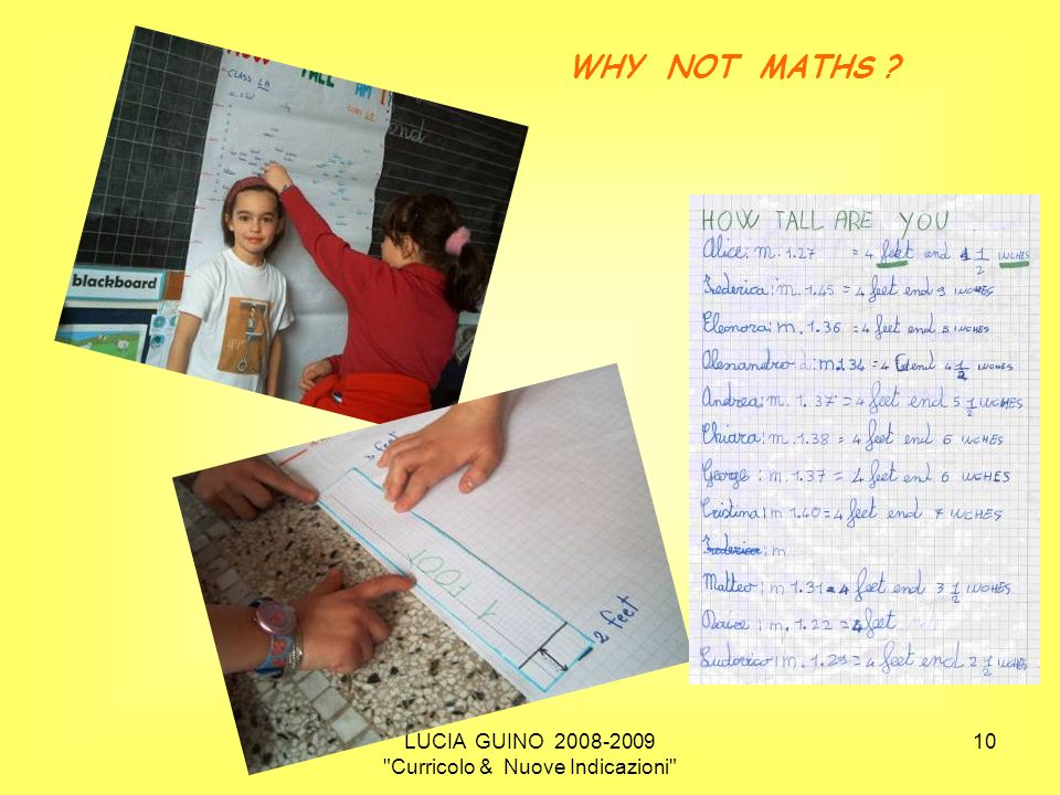 LUCIA GUINO 2008-2009 Curricolo & Nuove Indicazioni 10 WHY NOT MATHS ?