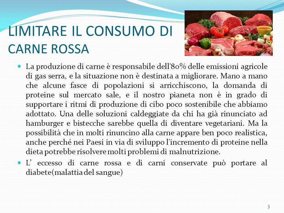 LIMITARE IL CONSUMO DI CARNE ROSSA La produzione di carne è responsabile dell 80% delle emissioni agricole di gas serra, e la situazione non è destinata a migliorare.