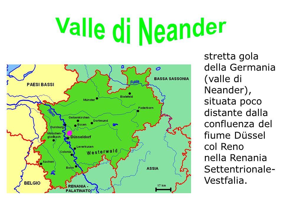 All inizio dell 800 la valle di Neander, attraversata dal fiumicello Düssel, era una specie di curiosità naturalistica: una stretta gola lunga 1.000 m e profonda 50 m, con pareti ripide e rocciose e con molte grotte.