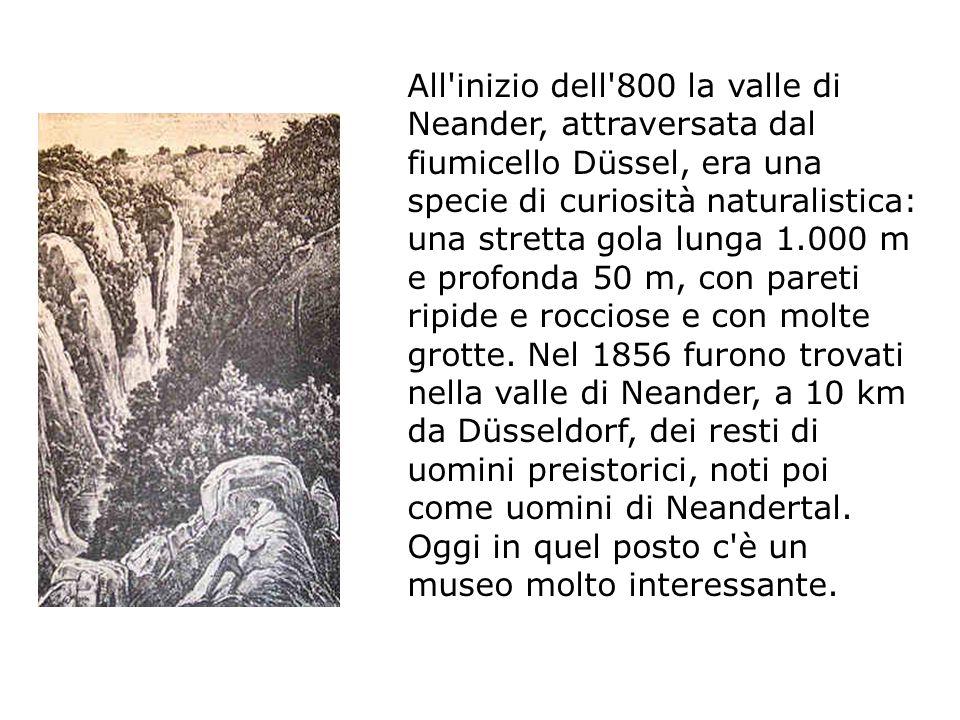 museo dell uomo di Neandertal