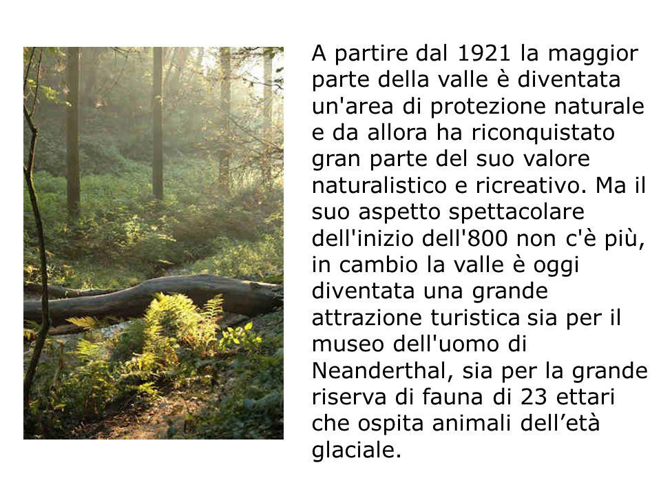 Nel 1856, alcuni operai che lavoravano in una caverna della valle, trovarono alcune ossa.