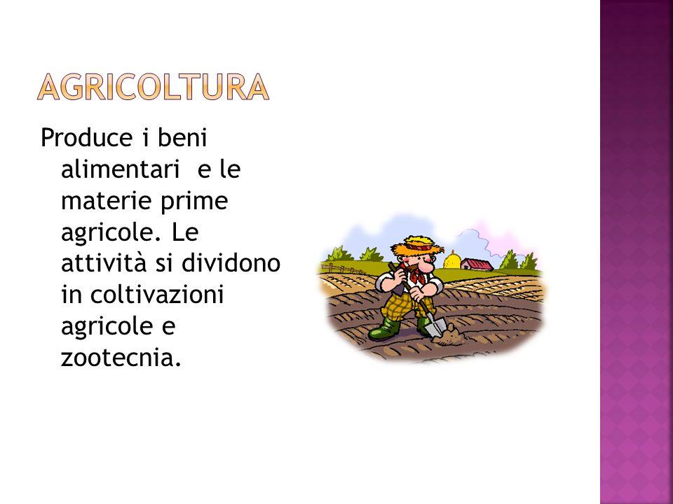 Produce i beni alimentari e le materie prime agricole.