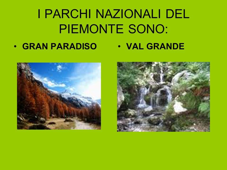 I PARCHI NAZIONALI DEL PIEMONTE SONO: GRAN PARADISO VAL GRANDE