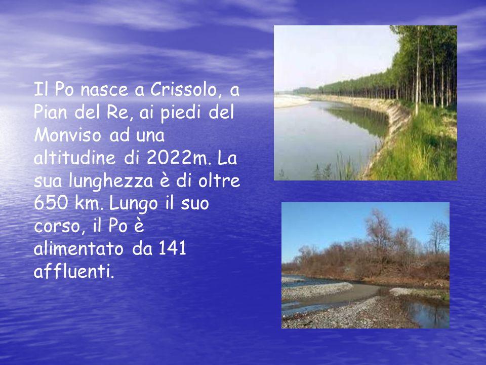 Il Po nasce a Crissolo, a Pian del Re, ai piedi del Monviso ad una altitudine di 2022m. La sua lunghezza è di oltre 650 km. Lungo il suo corso, il Po