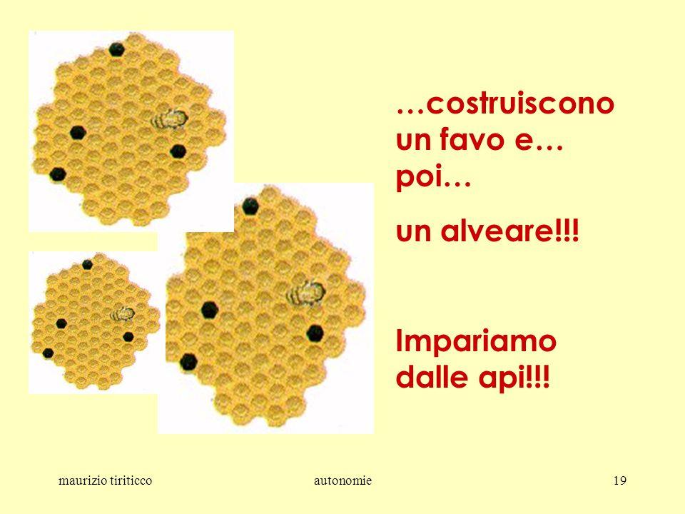 maurizio tiriticcoautonomie19 …costruiscono un favo e… poi… un alveare!!! Impariamo dalle api!!!