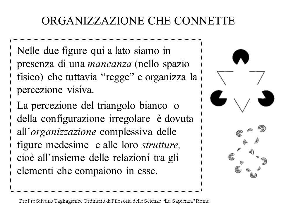 ORGANIZZAZIONE CHE CONNETTE Nelle due figure qui a lato siamo in presenza di una mancanza (nello spazio fisico) che tuttavia regge e organizza la perc