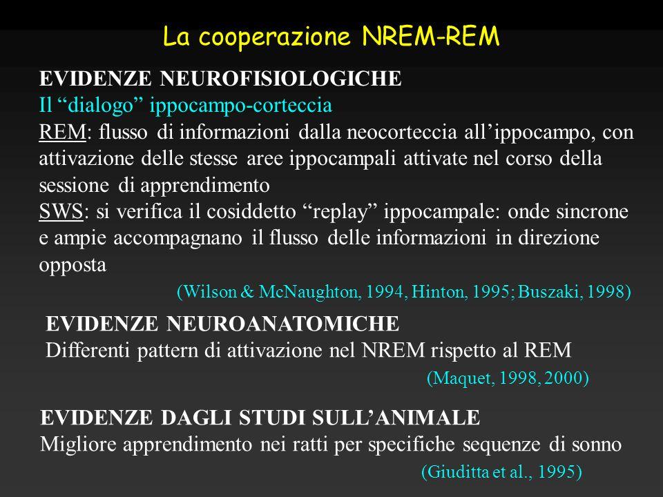 La cooperazione NREM-REM EVIDENZE NEUROFISIOLOGICHE Il dialogo ippocampo-corteccia REM: flusso di informazioni dalla neocorteccia allippocampo, con at