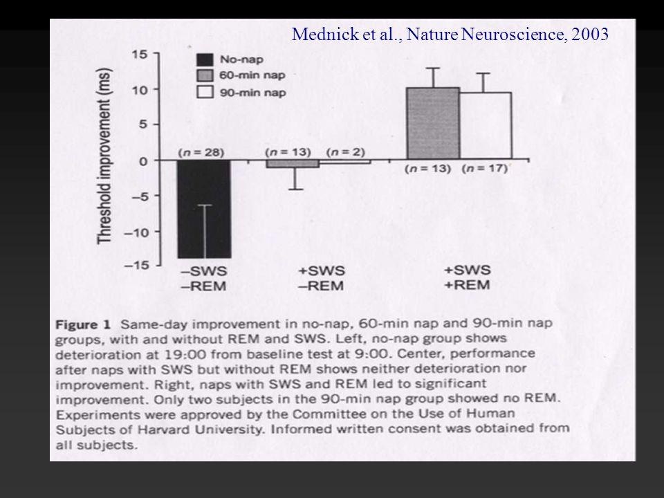 Mednick et al., Nature Neuroscience, 2003