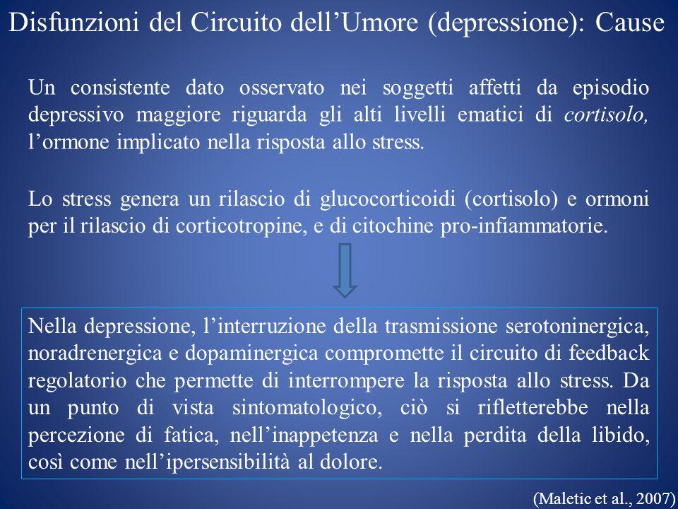 Disfunzioni del Circuito dellUmore (depressione): Cause Un consistente dato osservato nei soggetti affetti da episodio depressivo maggiore riguarda gl