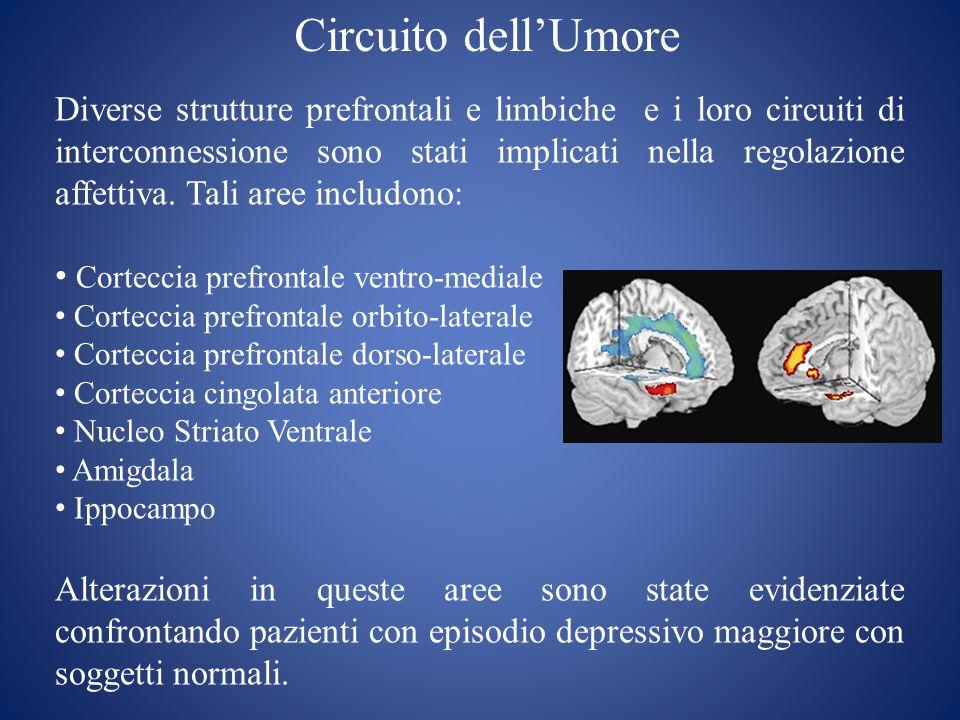 Circuito dellUmore Diverse strutture prefrontali e limbiche e i loro circuiti di interconnessione sono stati implicati nella regolazione affettiva. Ta