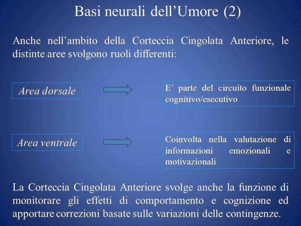 Basi neurali dellUmore (2) Anche nellambito della Corteccia Cingolata Anteriore, le distinte aree svolgono ruoli differenti: Area dorsale Area ventral