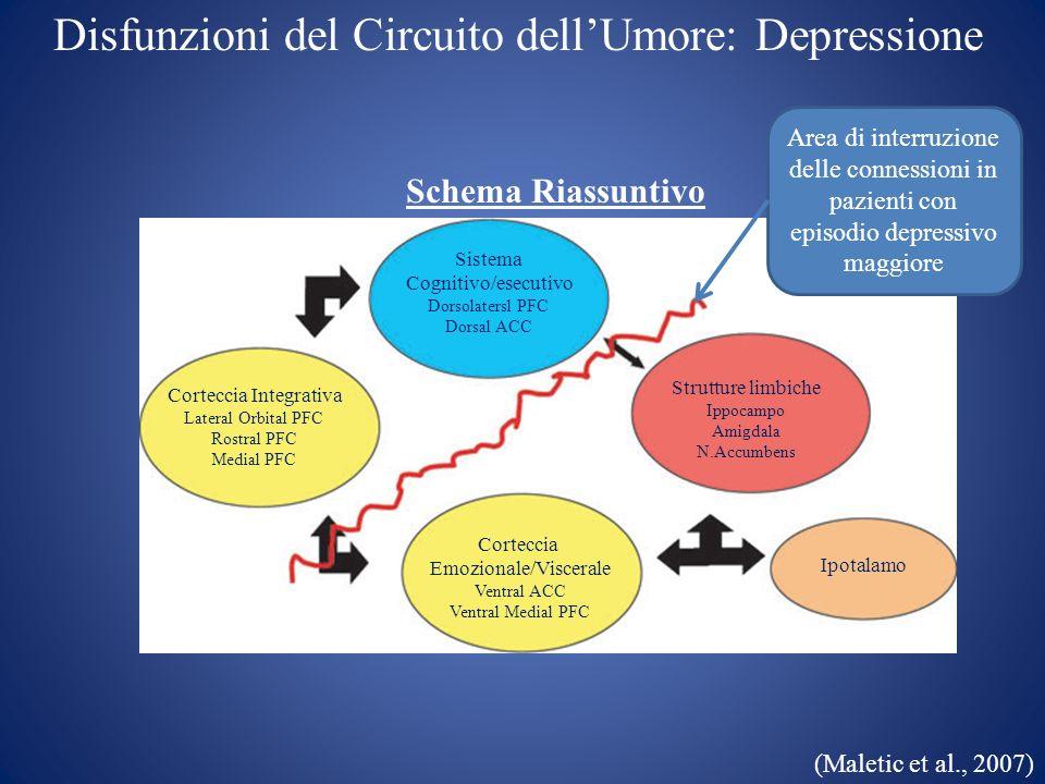 Correlati neuroanatomici della Depressione DEPRESSIONE (aree 6 e 45 di Brodmann)