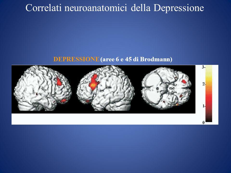 Disfunzioni del Circuito dellUmore (depressione): Cause Un consistente dato osservato nei soggetti affetti da episodio depressivo maggiore riguarda gli alti livelli ematici di cortisolo, lormone implicato nella risposta allo stress.