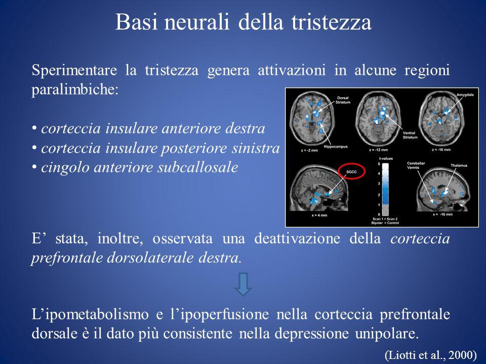 Basi neurali della tristezza Sperimentare la tristezza genera attivazioni in alcune regioni paralimbiche: corteccia insulare anteriore destra cortecci