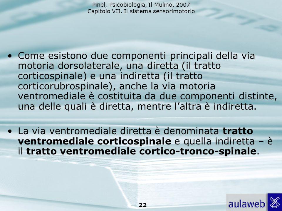 Pinel, Psicobiologia, Il Mulino, 2007 Capitolo VII. Il sistema sensorimotorio 22 Come esistono due componenti principali della via motoria dorsolatera