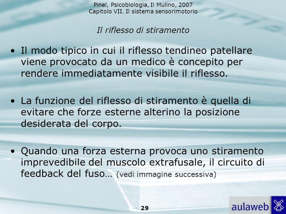 Pinel, Psicobiologia, Il Mulino, 2007 Capitolo VII. Il sistema sensorimotorio 29 Il riflesso di stiramento Il modo tipico in cui il riflesso tendineo